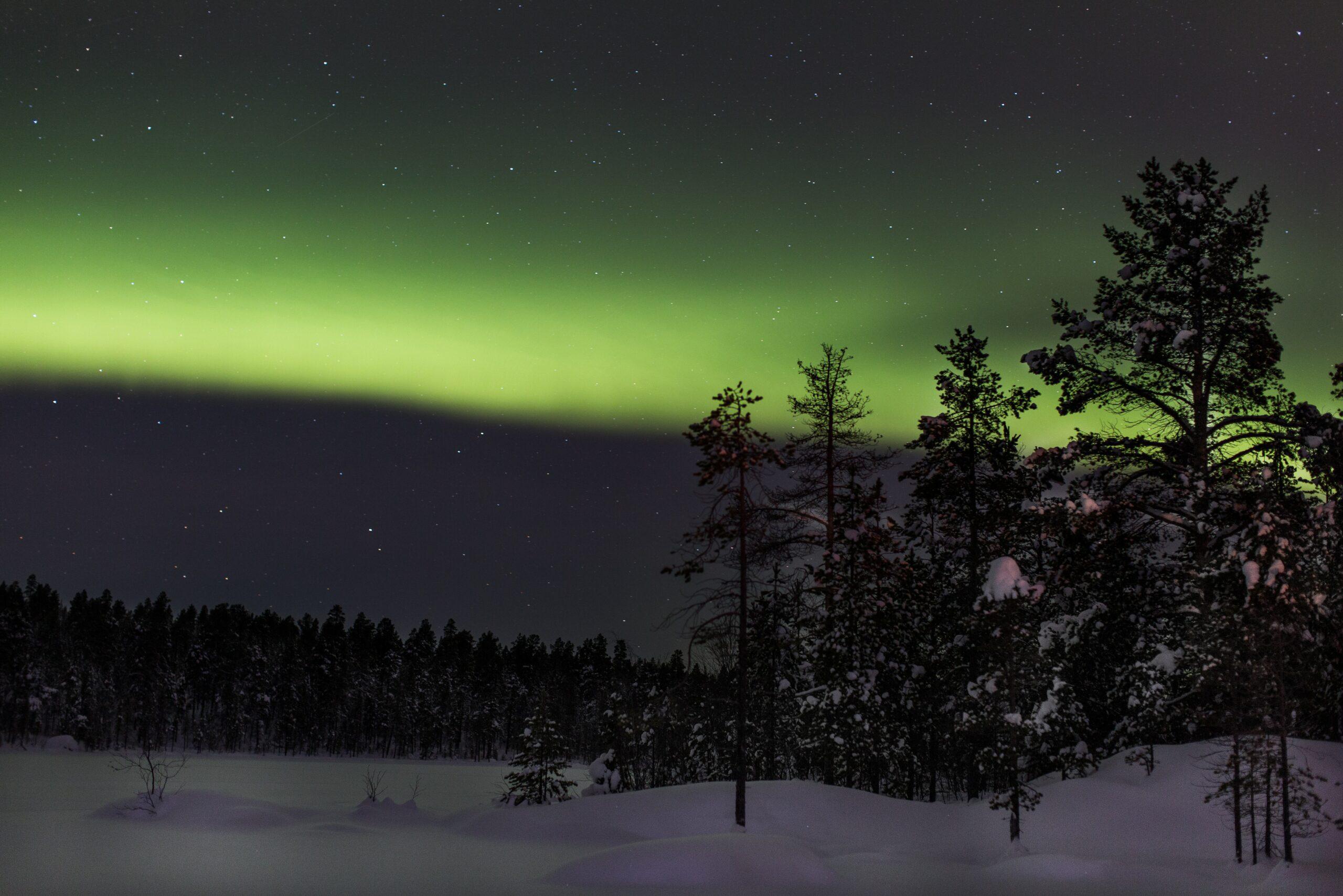 """#135 """"Finlandia przebudzona"""""""